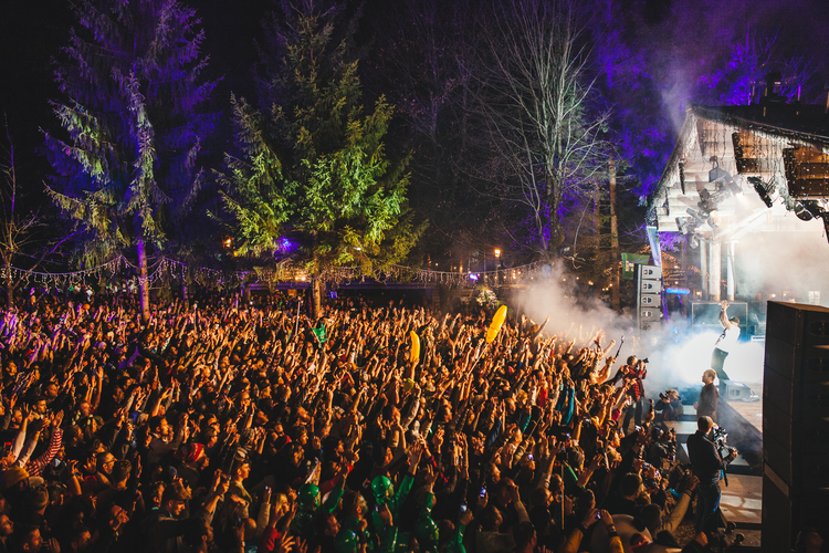 Forest Party Snowbombing